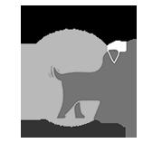 Logo-Design-Wagology
